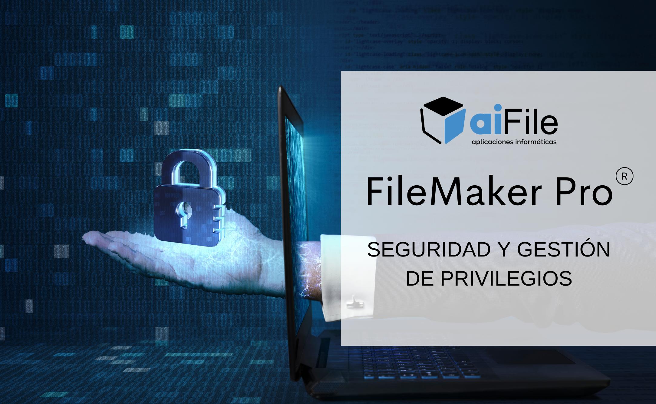 Seguridad En FileMaker Pro: Cómo Hacer Una Correcta Gestión De Los Privilegios